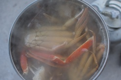 Overhead photo of a pot of steaming crab legs.
